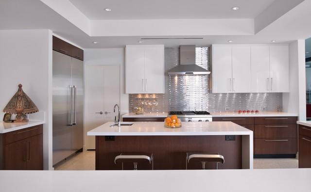 Raintree modern-kitchen