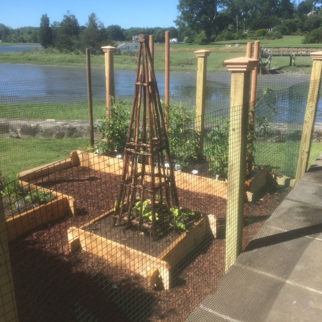 """Raised """"Mortise and Tension"""" Vegetable Gardens"""
