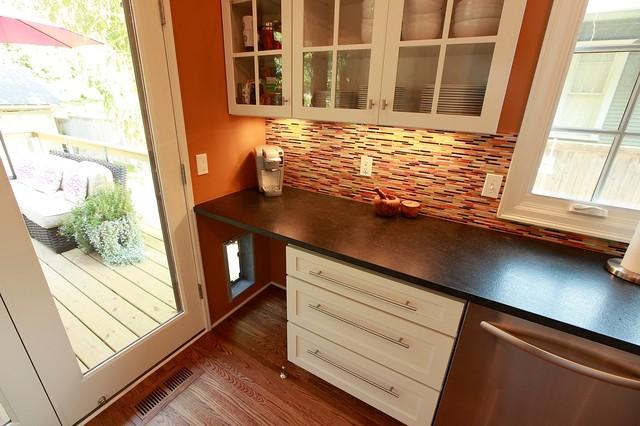 Realtor/Dr. Kitchen contemporary-kitchen
