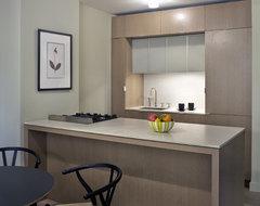 Rector Square modern-kitchen
