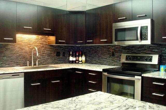 Http Www Houzz Com Photos 3693838 Renovated Condo Tuxedo Estates Contemporary Kitchen Other