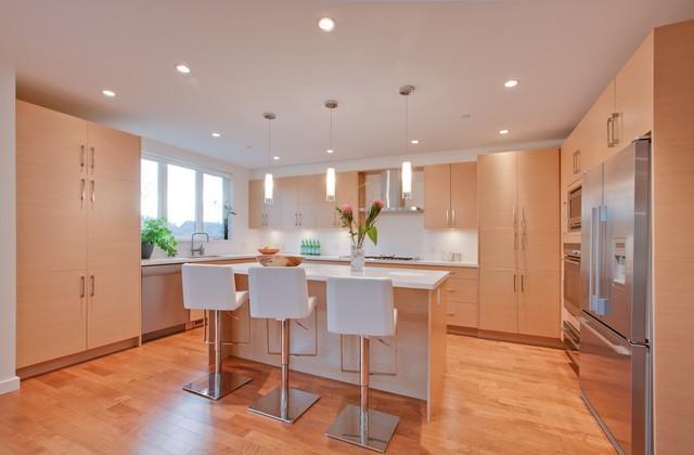 Renovated Kitchen contemporary-kitchen