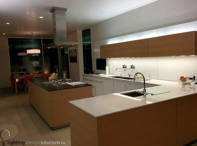 Example of a minimalist kitchen design in Houston