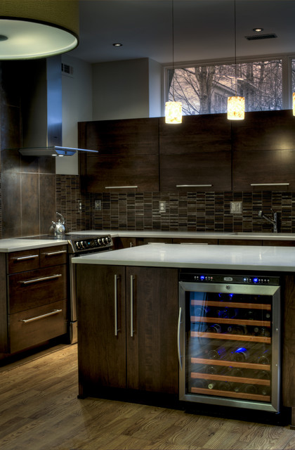 Reston European Kitchen - Lighting & Range contemporary kitchen