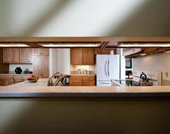 Reston Kitchen - Wall Opening contemporary-kitchen