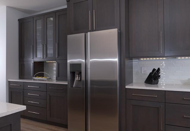 contemporary kitchen dc metro by expert kitchen designs llc
