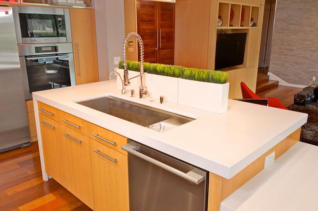 Richardson Project contemporary-kitchen