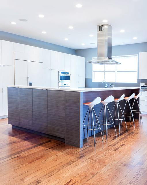 River Forest Home modern-kitchen