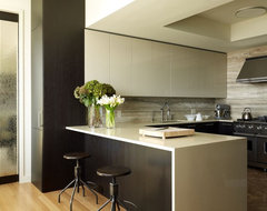 Riverhouse contemporary-kitchen