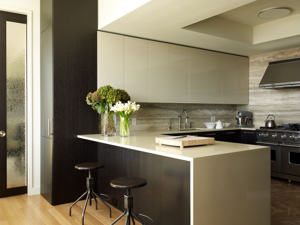 Inspiration for a contemporary kitchen remodel in New York with stainless steel appliances