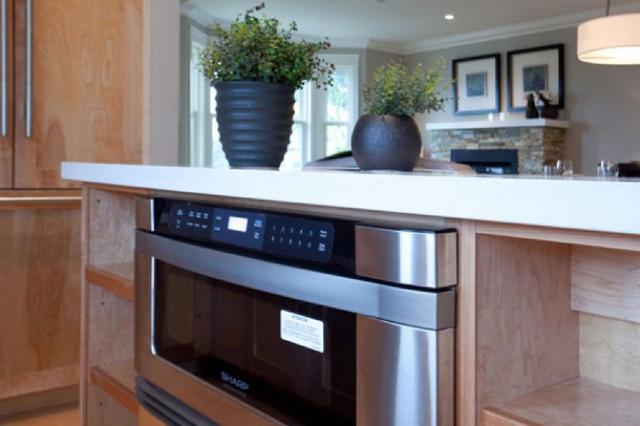 Robinson House contemporary-kitchen