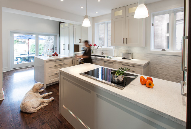 Rosedale Residence - Kitchen contemporary-kitchen