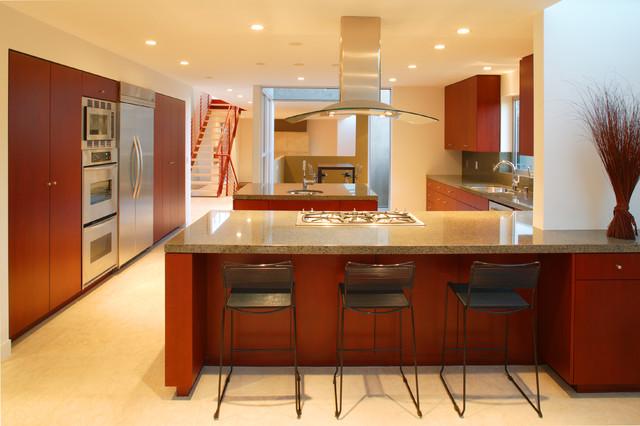 Rosenthal Residence modern-kitchen
