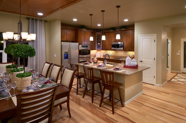 Ryland Homes Pioneer Ridge Modesl - Contemporary - Kitchen ...