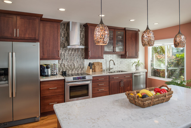 San Carlos, California Kitchen Remodel Modern Kitchen