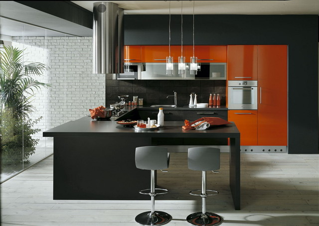 SAN DIEGO CONTEMPORARY KITCHEN DESIGN AND CABINETS ...