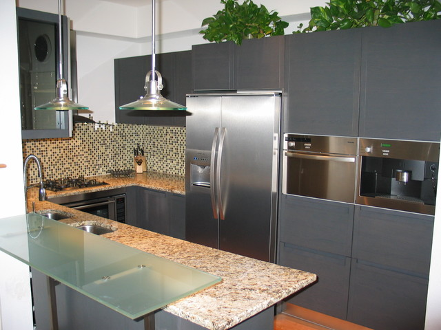 San Diego Contemporary Kitchen Design Modern Kitchen San Diego By Italian Kitchen