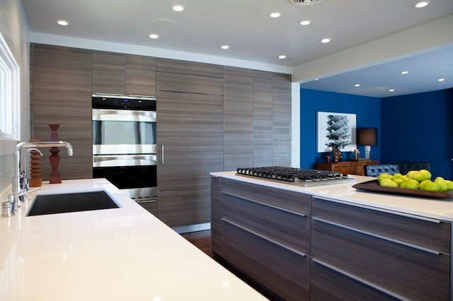 San Francisco Home Remodel Modern Kitchen San