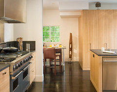San Francisco Kitchen modern-kitchen