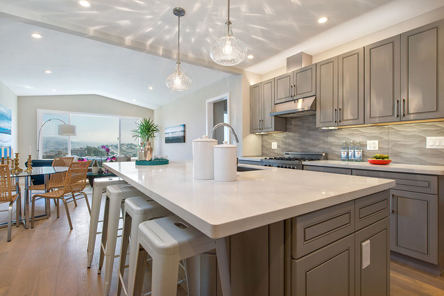 San Francisco Row House Transitional Kitchen San