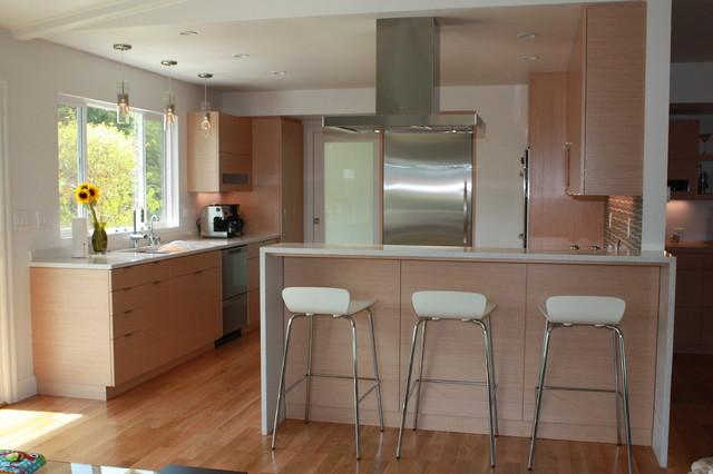 San Rafael kitchen remodel contemporary-kitchen
