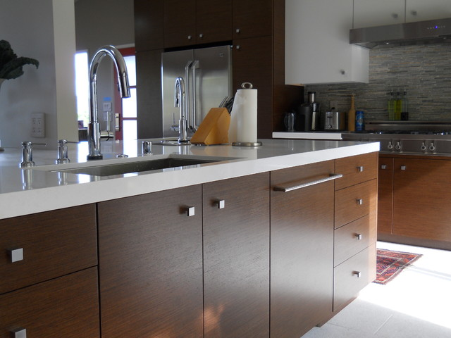 san rafael contemporary kitchen san francisco by
