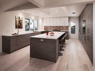 Santa Barbara Mission Canyon Contemporary Kitchen