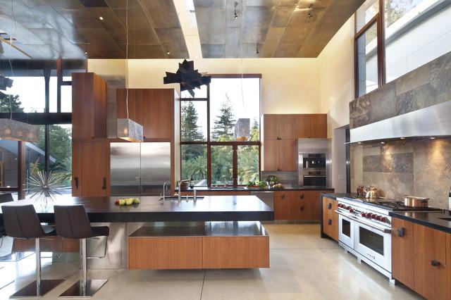Saratoga Creek House contemporary-kitchen