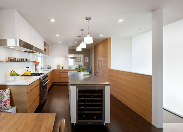 Sea Cliff modern kitchen