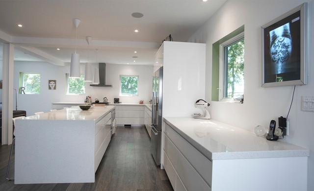 Sears Conversion contemporary-kitchen