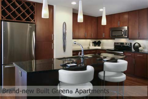 Seasons at Cherry Creek Model Unit traditional-kitchen