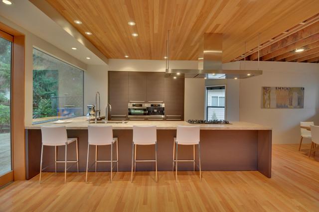 Shoreline Residence modern-kitchen