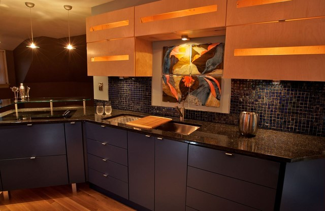 Showhouse contemporary-kitchen