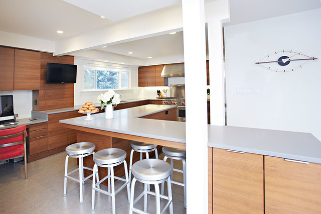 Shuttle residence contemporary-kitchen