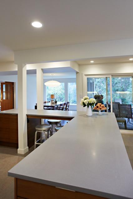 Shuttle residence midcentury-kitchen