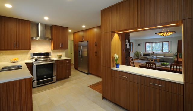 Silver Spring Kitchen contemporary-kitchen