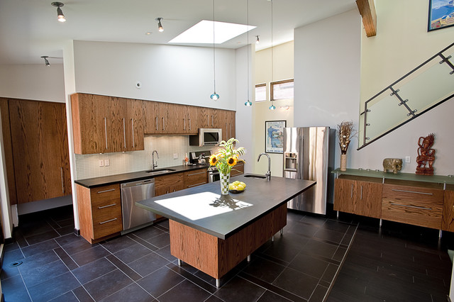 Silver Top House: Kitchen contemporary-kitchen