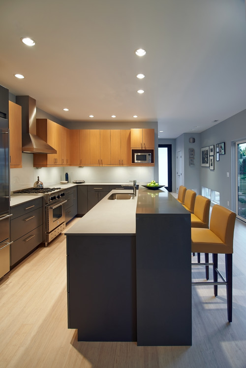 Modern Kitchen Renovation in Portland Oregon