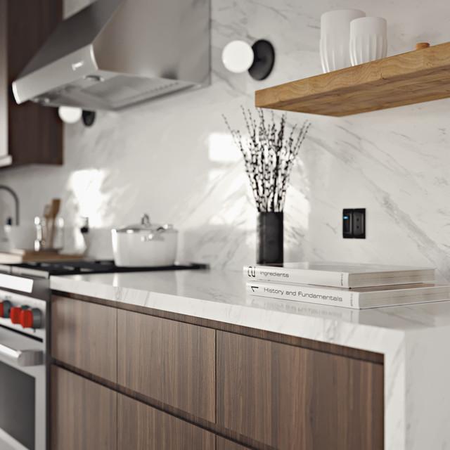 Skipp Ash Contemporary Kitchen Design - Contemporary ...