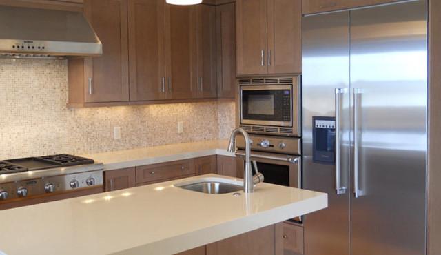 Sleek Kitchen contemporary-kitchen