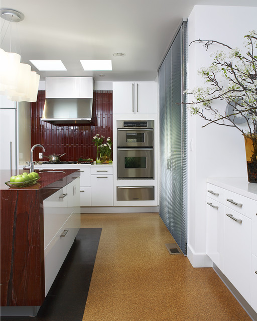 Sleek Kitchen Design: Sleek Kitchen
