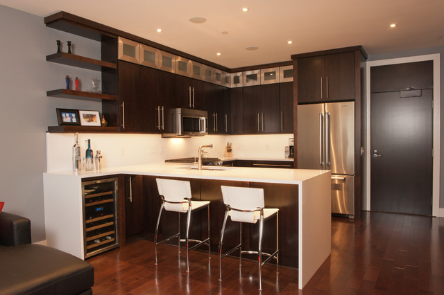 Sleek Urban Remodel Pittsburgh Contemporary Kitchen Other By Cabinet
