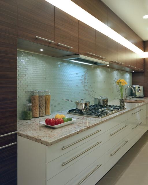 Slim Hoodfan Modern Kitchen vancouver by Sandrin