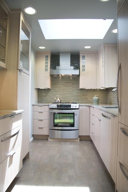 Small contemporary kitchen 2009 nkba design contest for Modern kitchen designs 2009