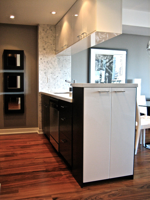 Small Downtown Condo Modern Kitchen Toronto By David J Design Inc