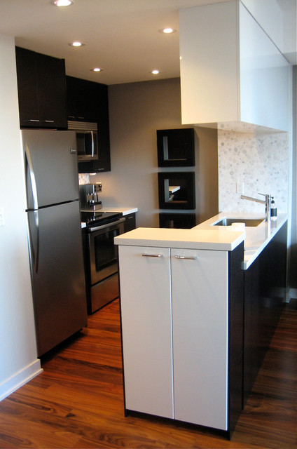 Small Downtown Condo Modern Kitchen