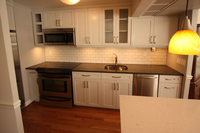 Chicago Condo Kitchen Remodel