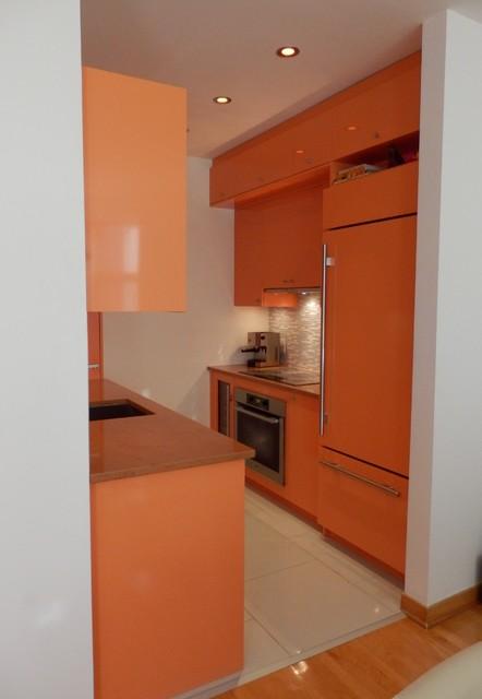 Small Orange Kitchen contemporary kitchen