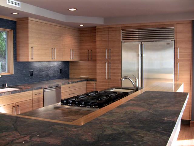 Snedegar Residence contemporary-kitchen