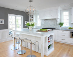 Soothing White and Gray Kitchen Remodel traditional-kitchen